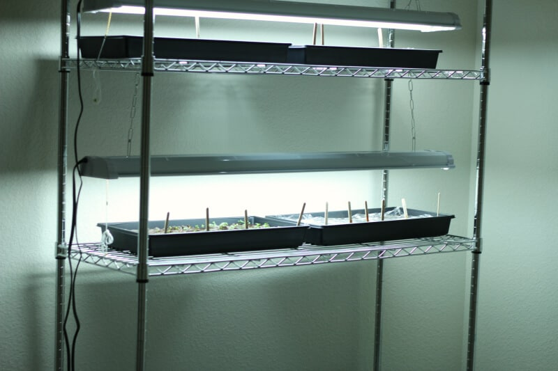 homemade seed shelf