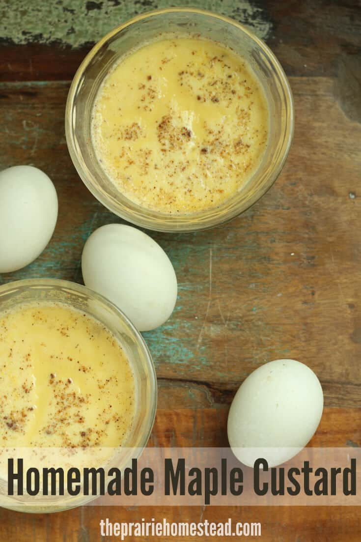 Maple Custard Cups recipe made with duck eggs