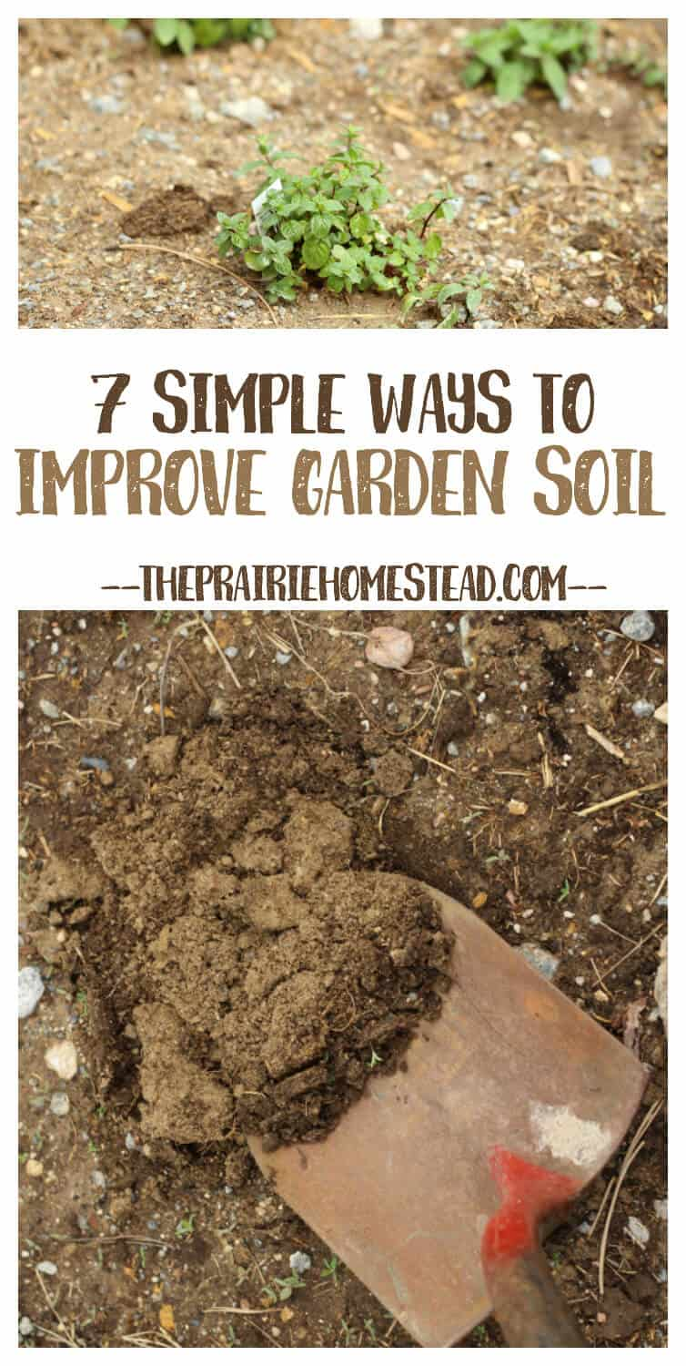 7 simple ways to improve garden soil the prairie homestead for Garden topsoil