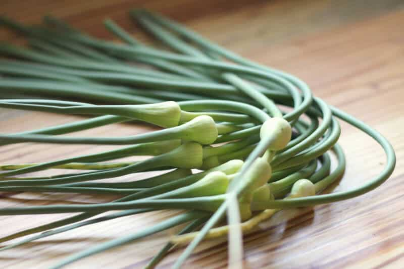 how to cut garlic scapes