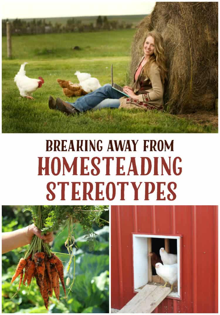 homesteading stereotypes