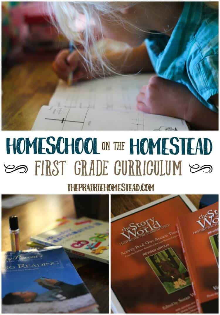 homeschooling on the homestead-- first grade
