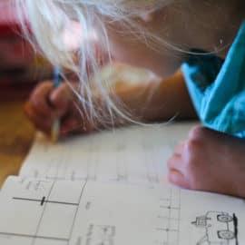 first grade homeschool curriculum for homesteaders