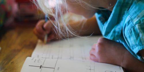 Homestead Homeschooling: First Grade