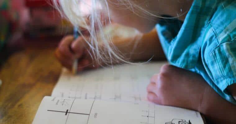 Homestead Homeschooling: Year 2