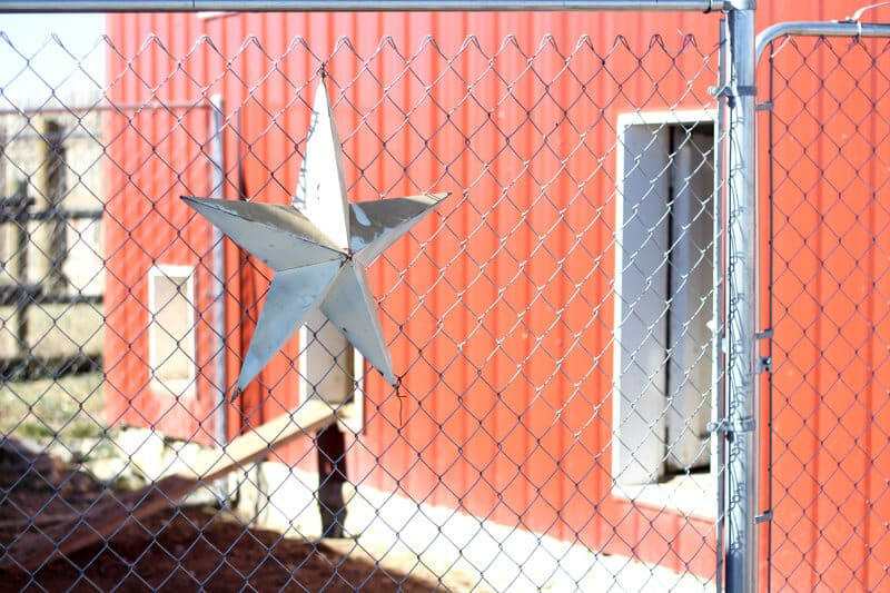 chain link fence chicken coop