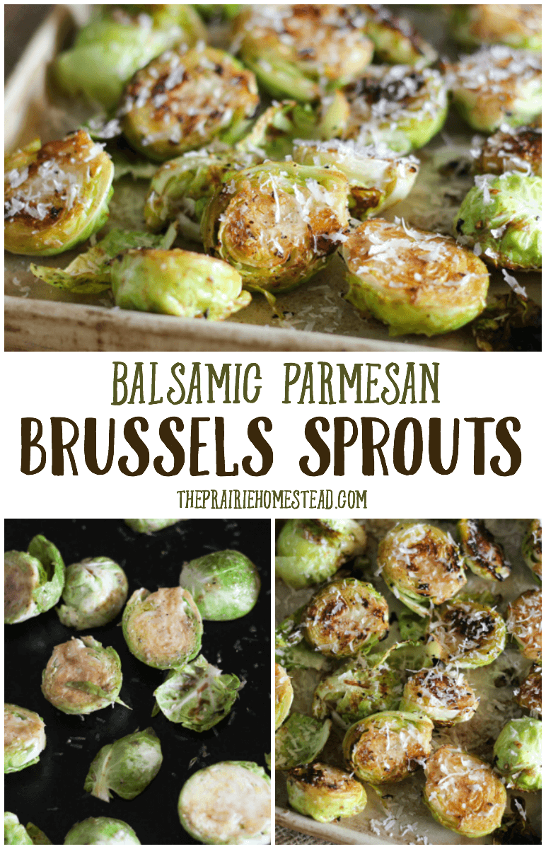 roasted balsamic parmesan brussels sprouts