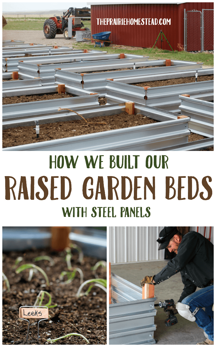 how we built raised garden beds with steel panels