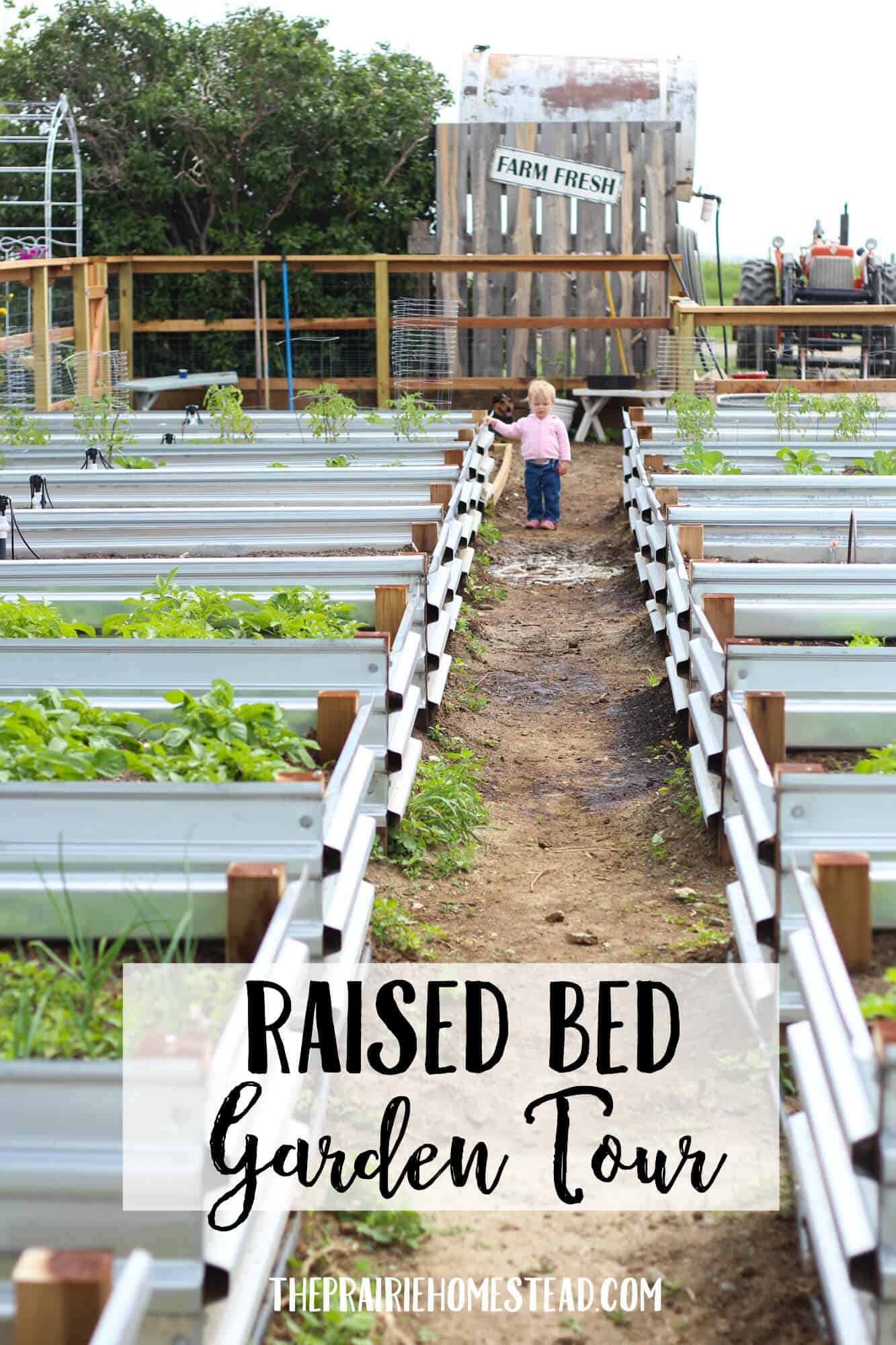 raised bed garden tour