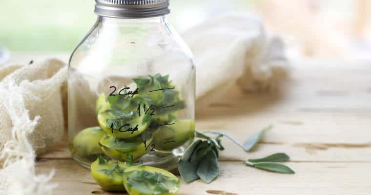 how to preserve herbs in olive oil