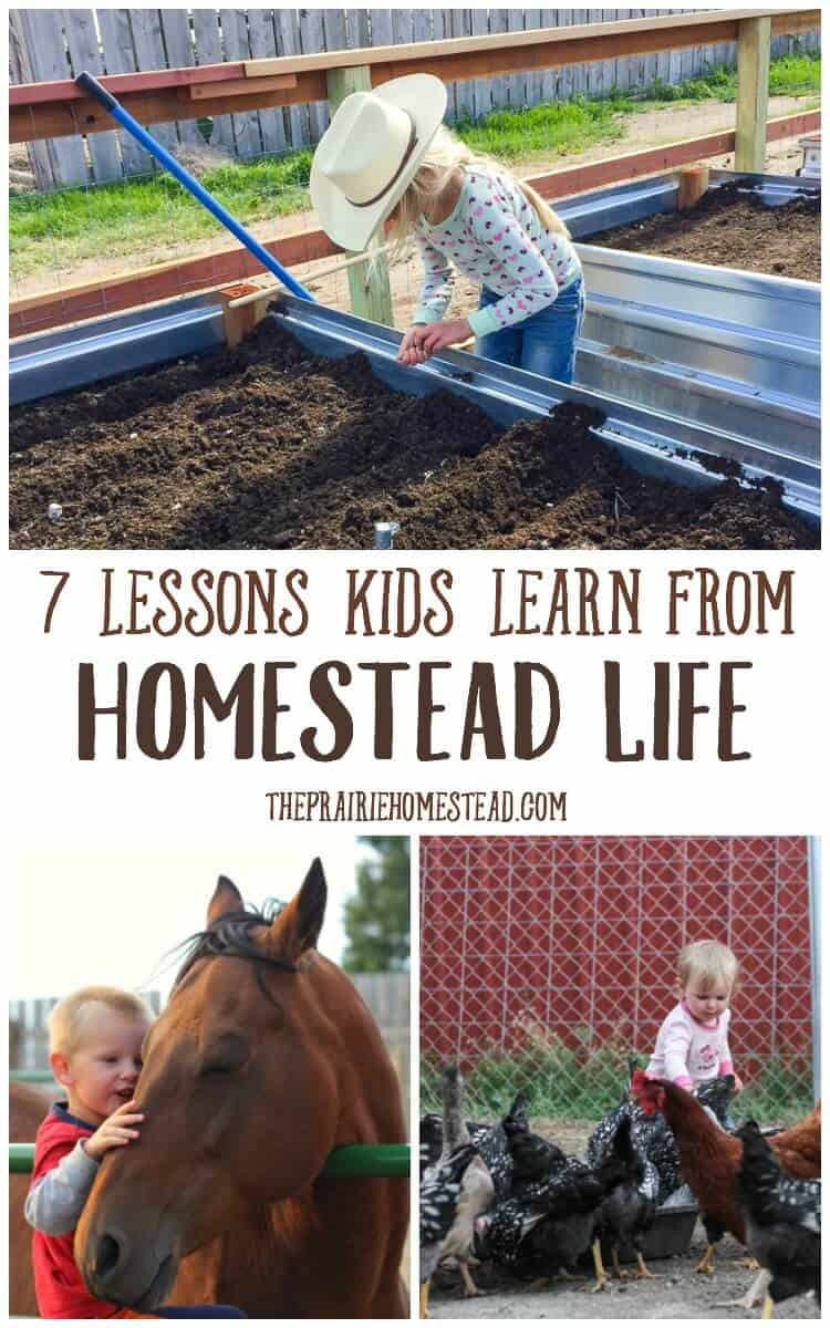 lessons kids learn from homestead life
