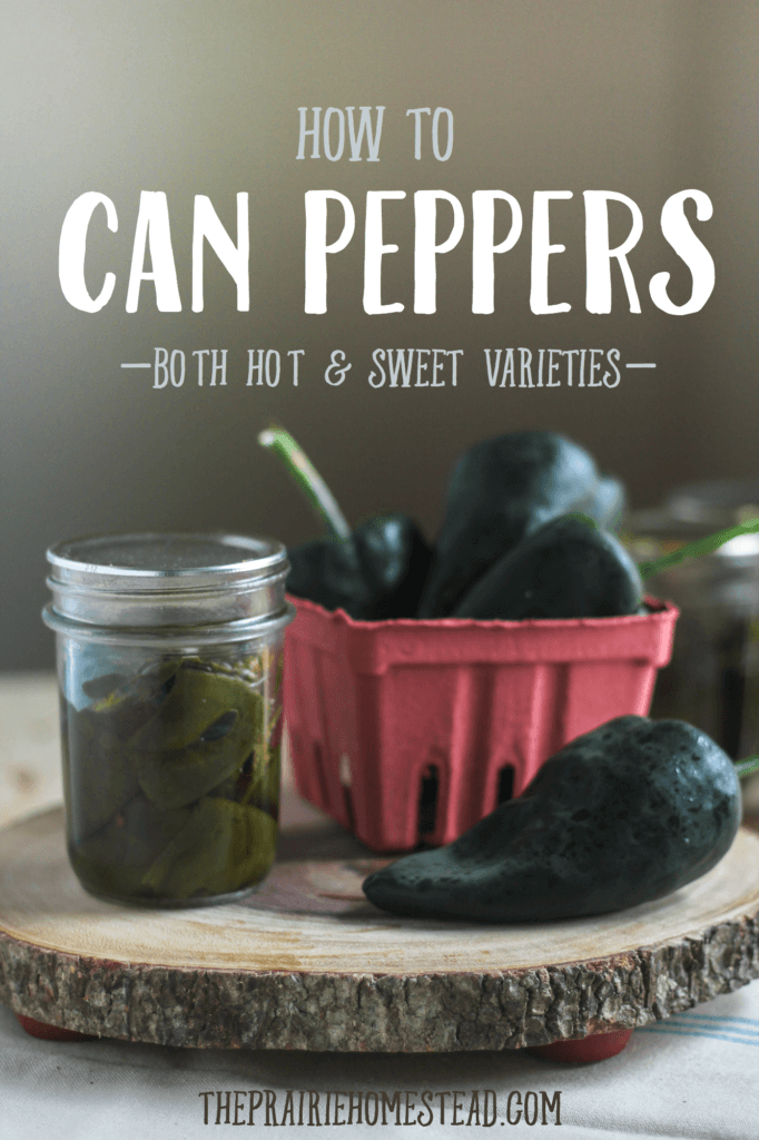 Canning Peppers: A Tutorial