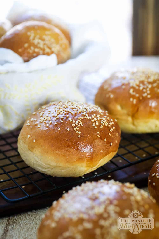 homemade hamburger buns recipe