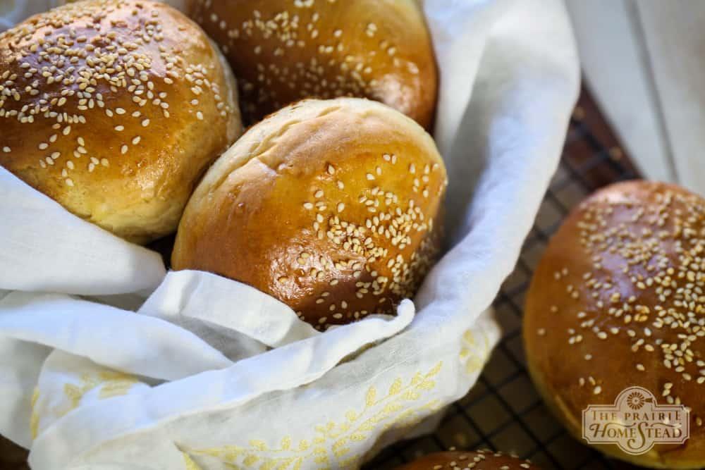 best homemade burger buns recipe