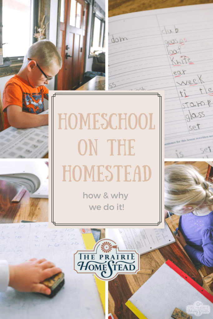 How and why we homeschool on the homestead!