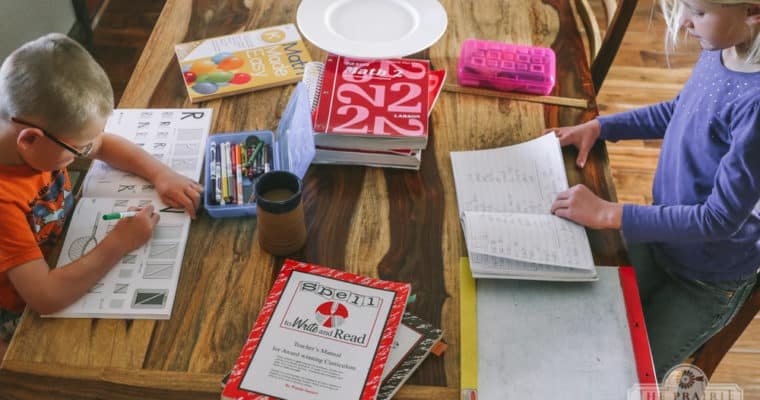 Homestead Homeschooling: Year 3