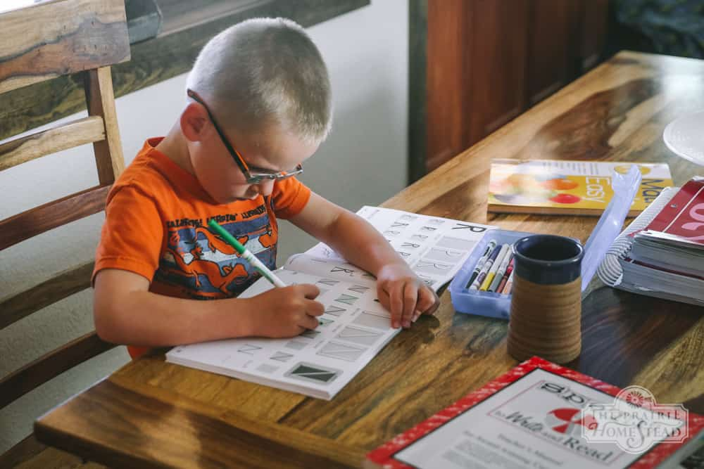 homeschooling on the homestead, second grade