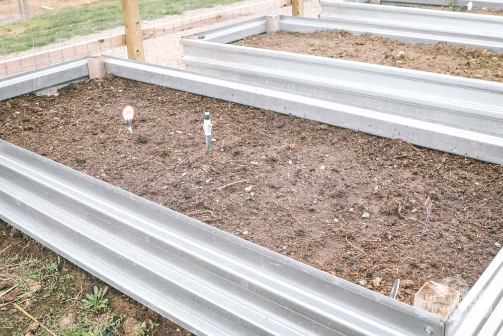preparing raised beds for spring planting