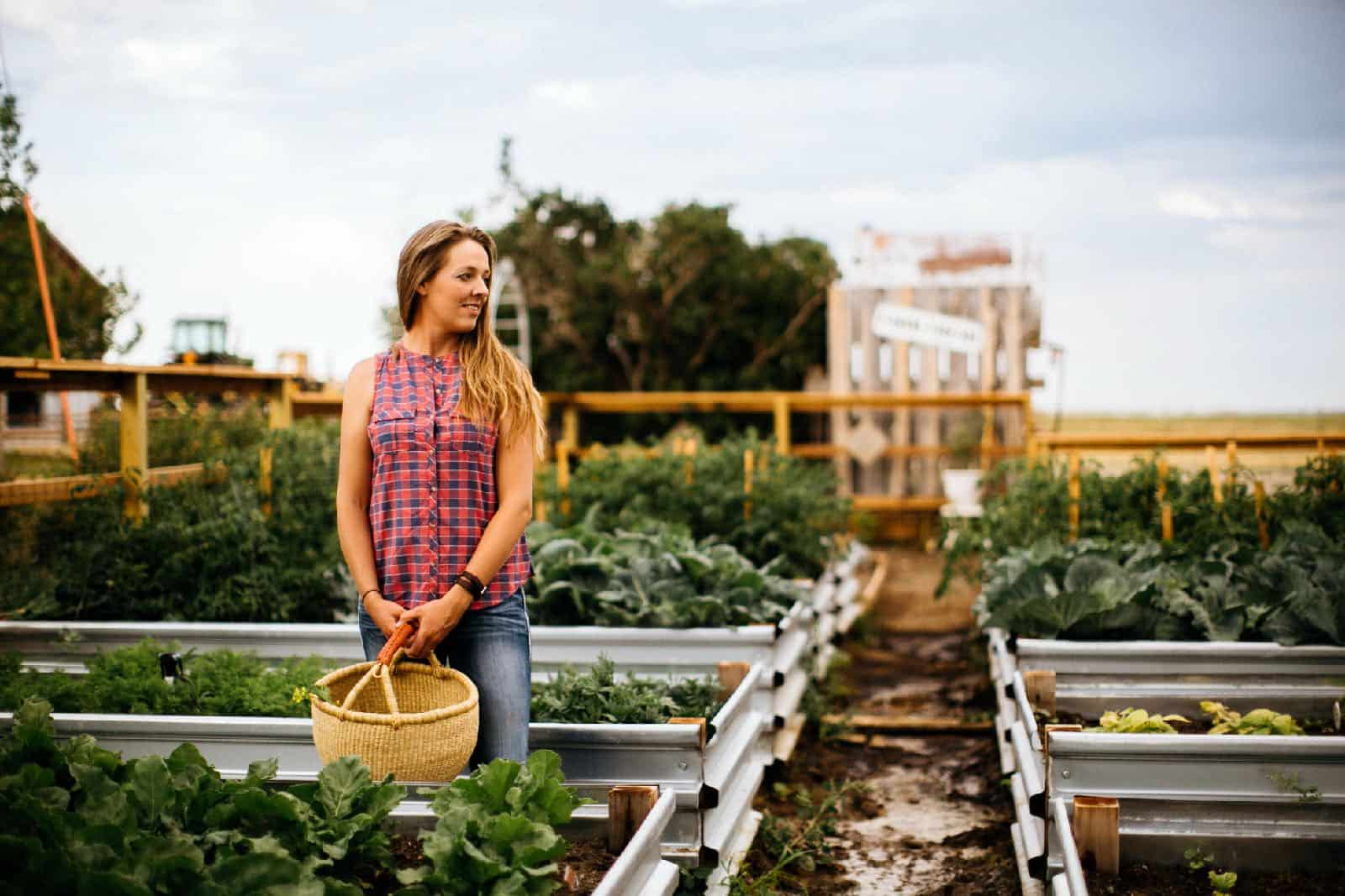 return to your roots • The Prairie Homestead