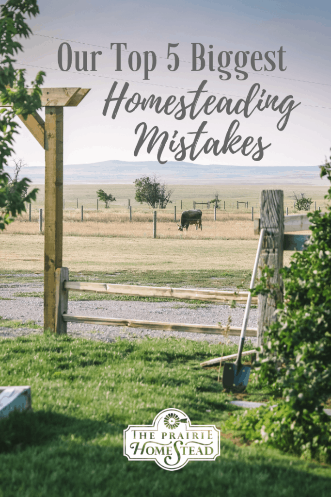 top 5 homesteading mistakes