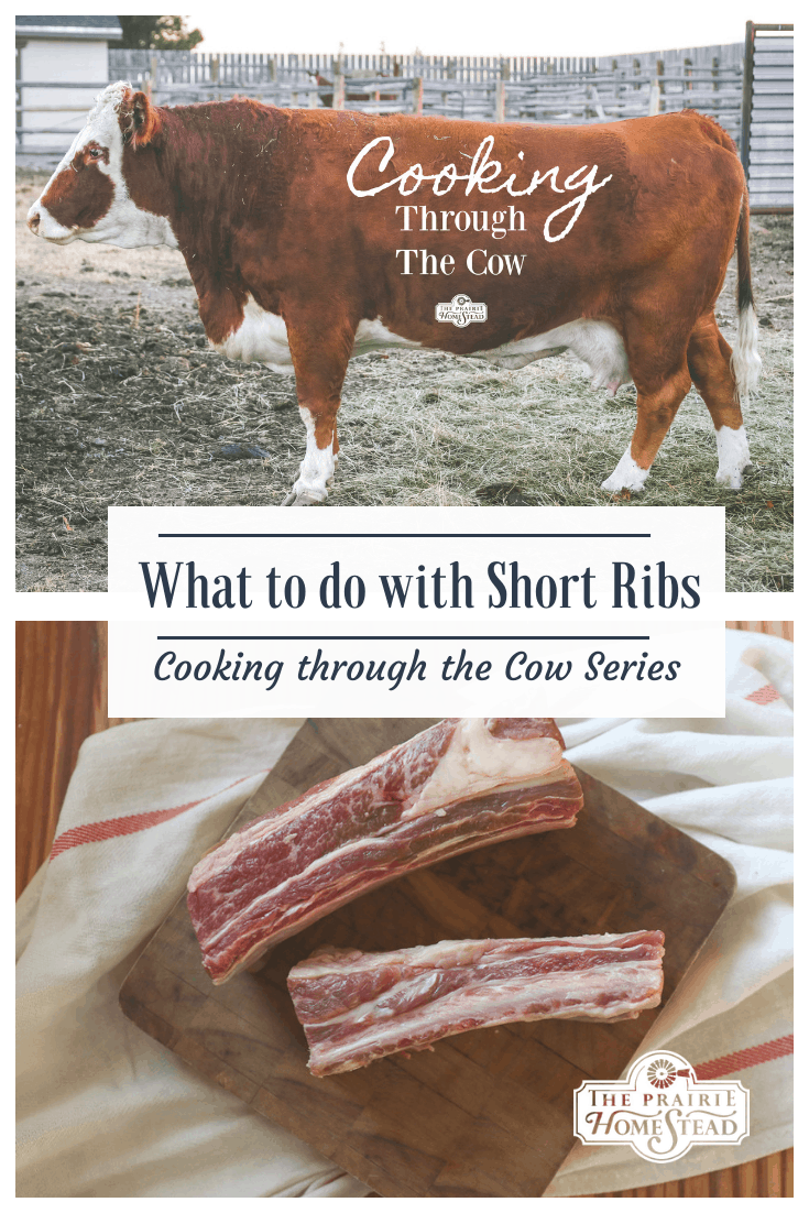 what to do with short ribs