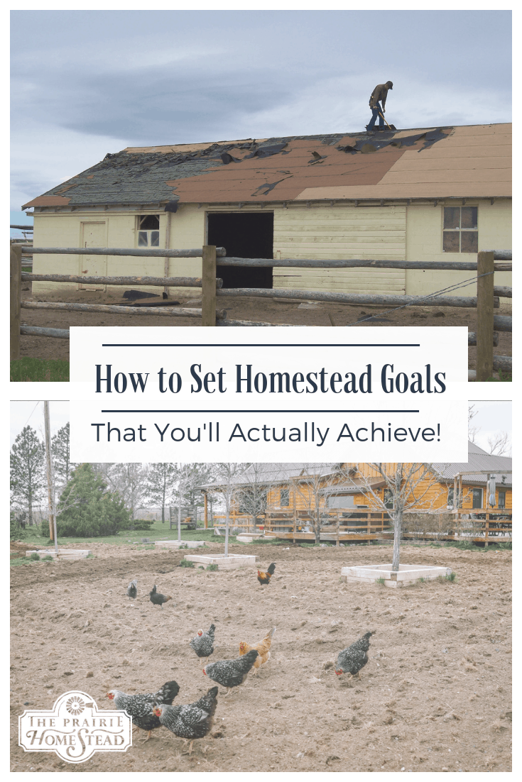 how to set homestead goals that you'll actually achieve