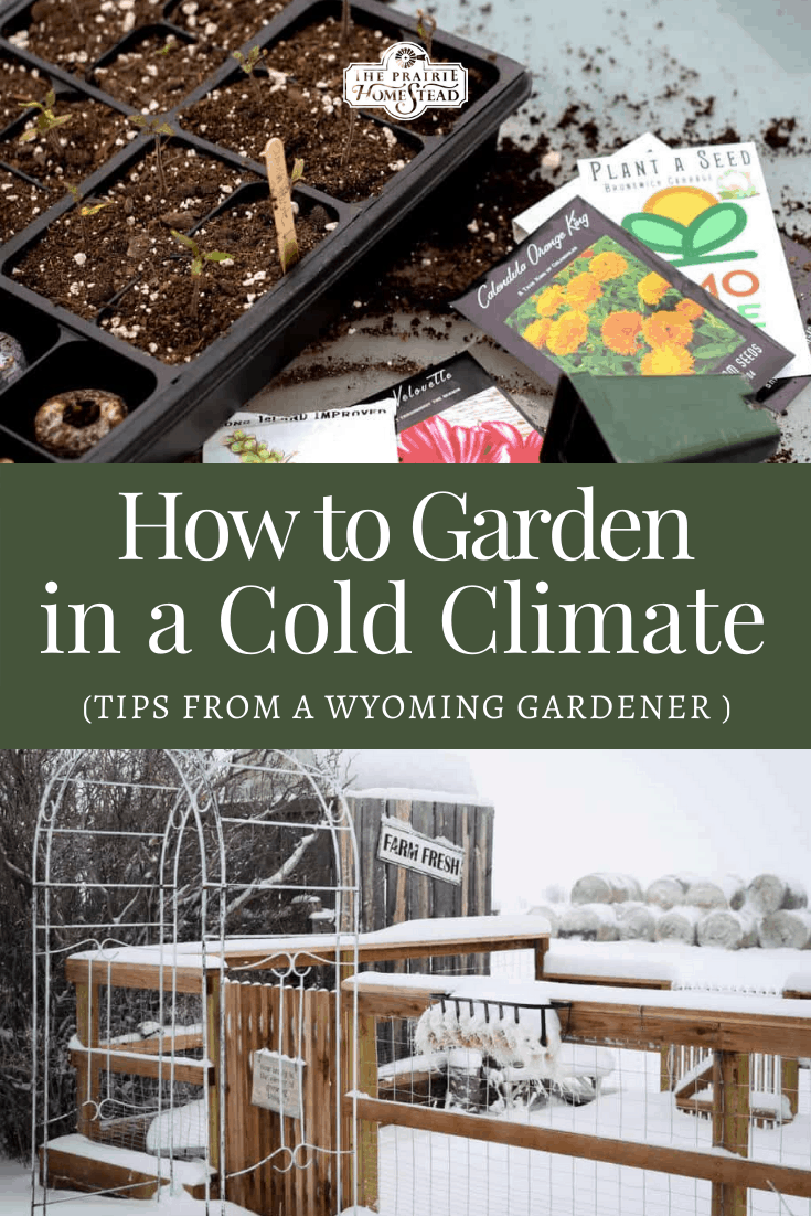 How to Garden in a Cold Climate