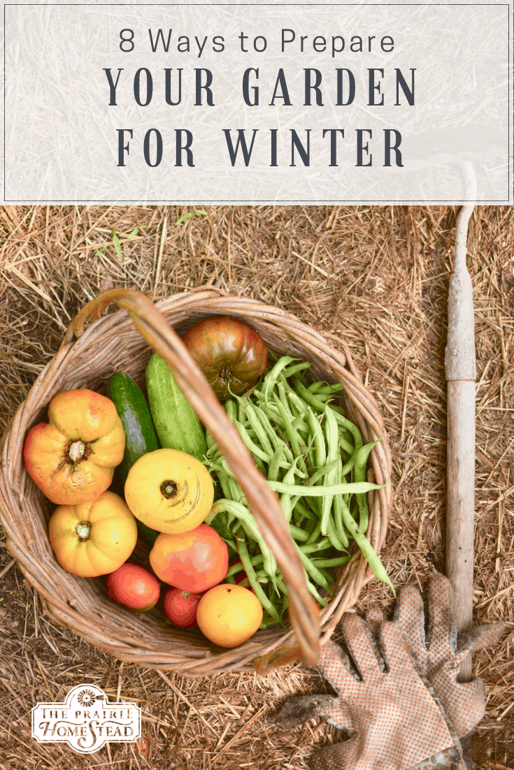 8 Ways to Prepare Your Garden for Winter