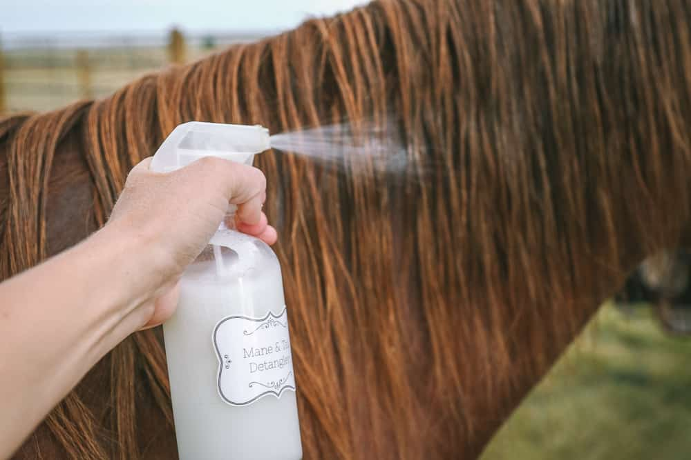 homemade mane and tail detangler recipe