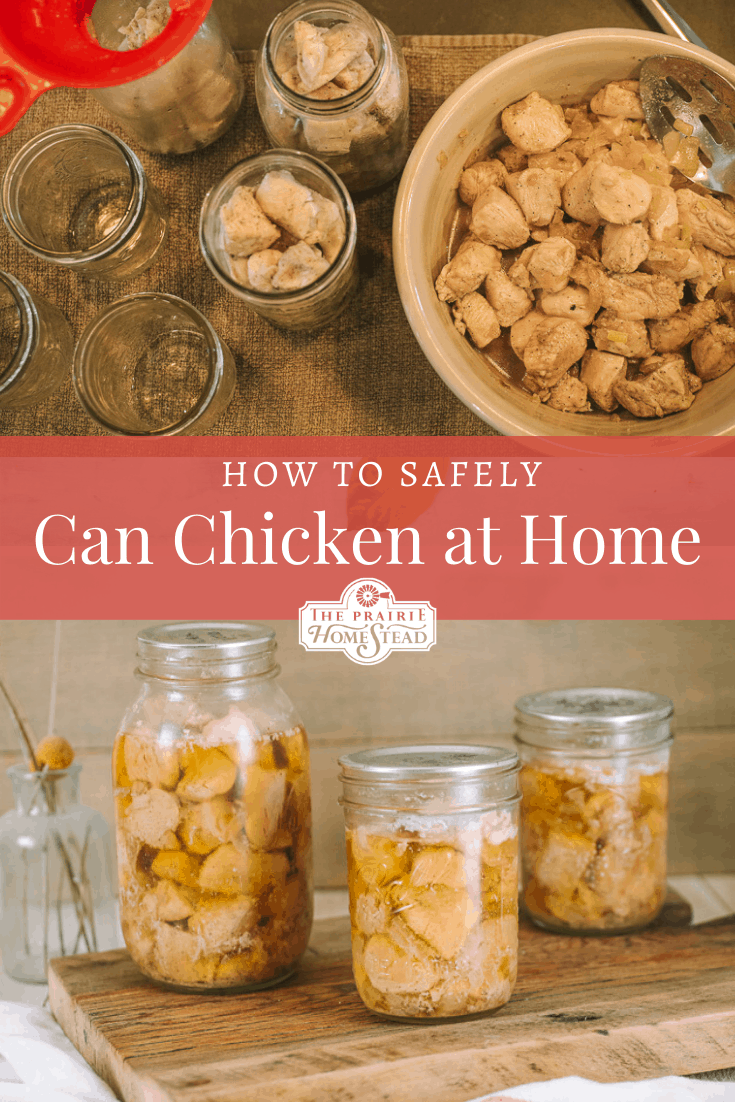 how to can chicken