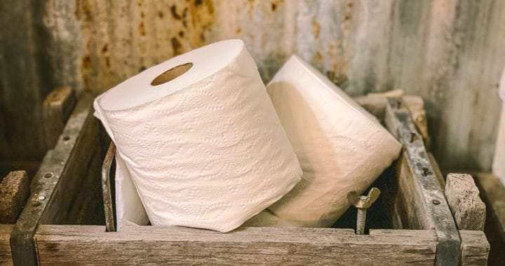 toilet paper alternatives