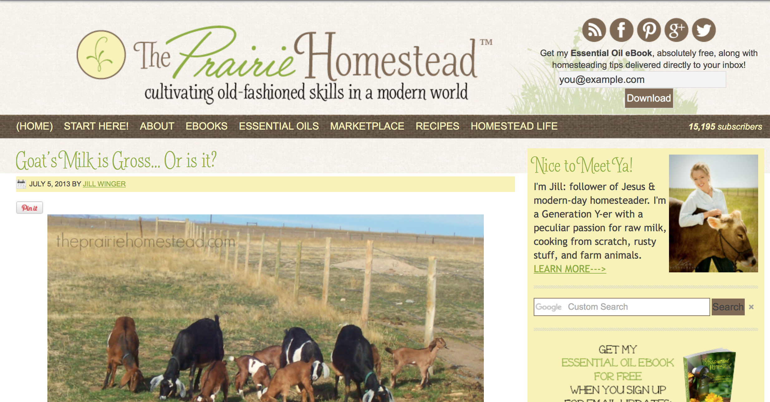 how to start a homestead blog
