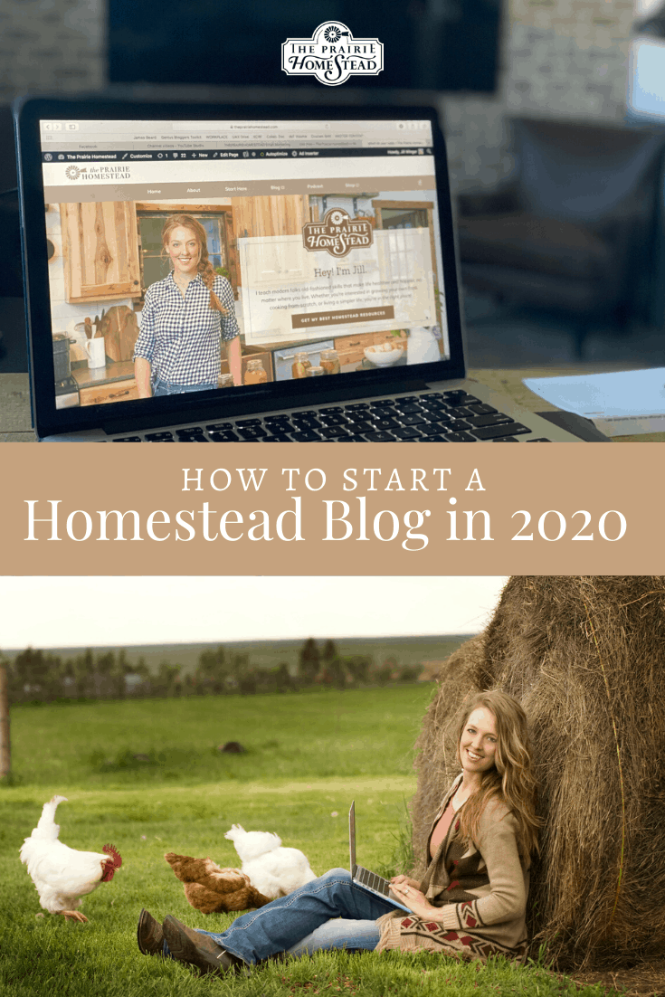 how to start a homestead blog in 2020