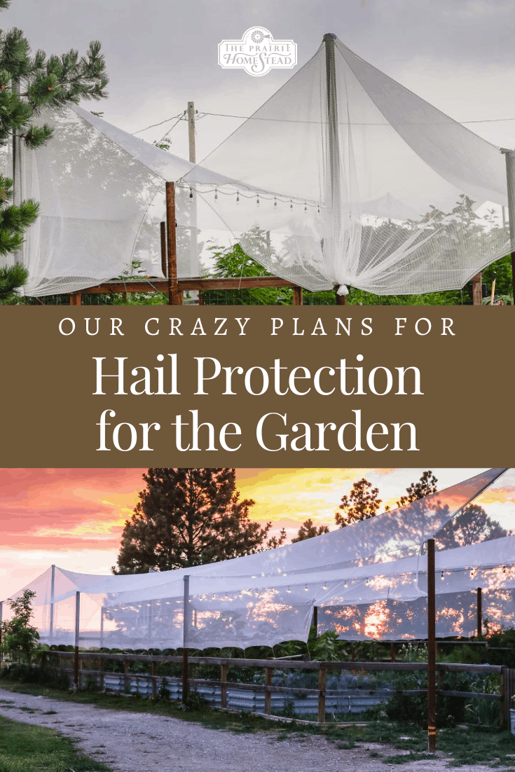 Hail Protection for the Garden