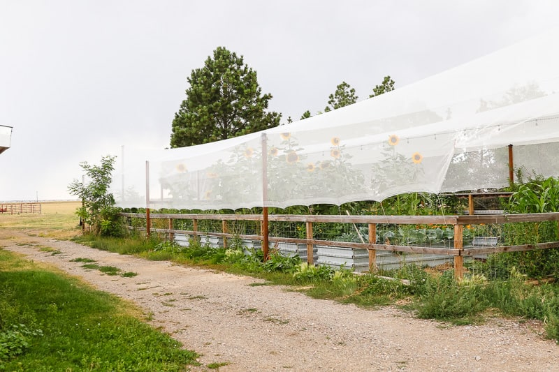 garden hail protection system