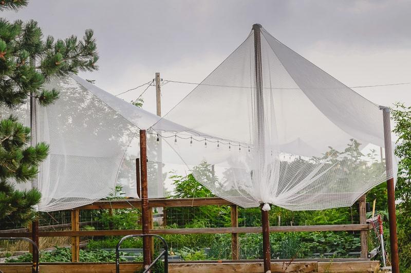 garden hail protection