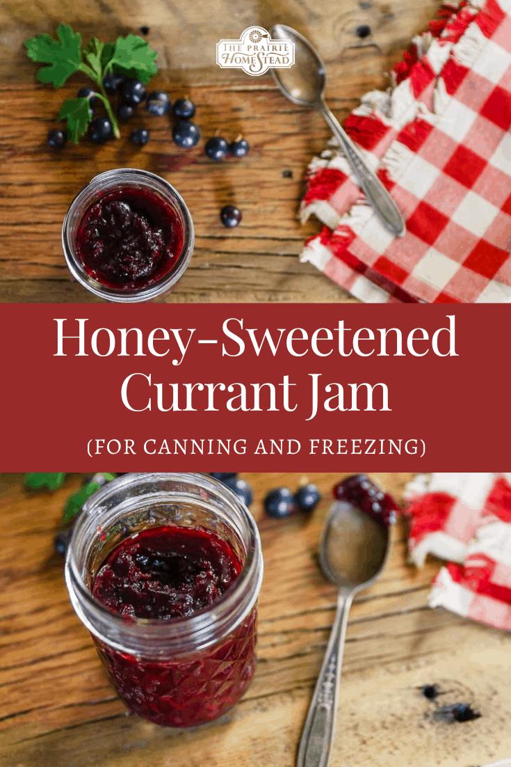 Honey-Sweetened Currant Jam