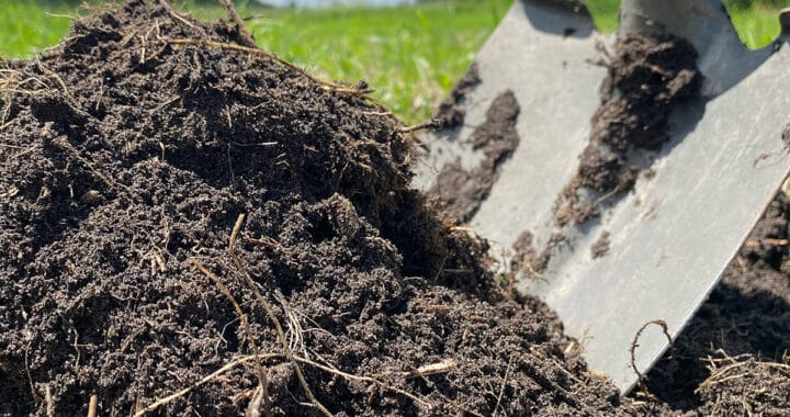 The Best Organic Fertilizers | Compost