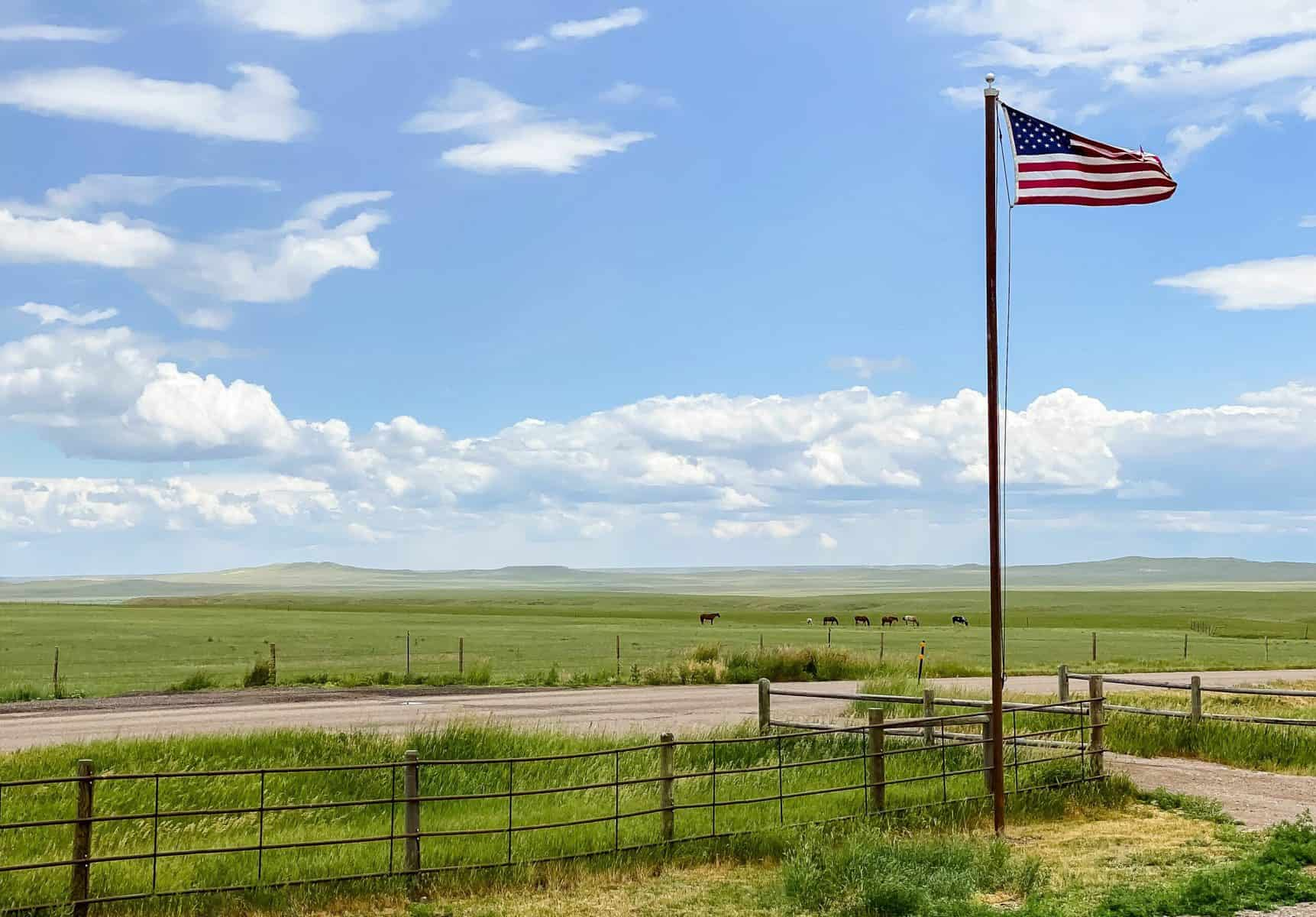 Cultivating Community While Homestead (American pride)