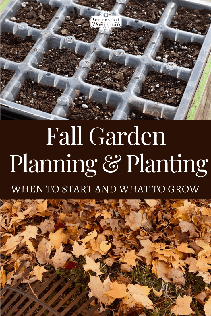 Fall Garden Planning and Planting