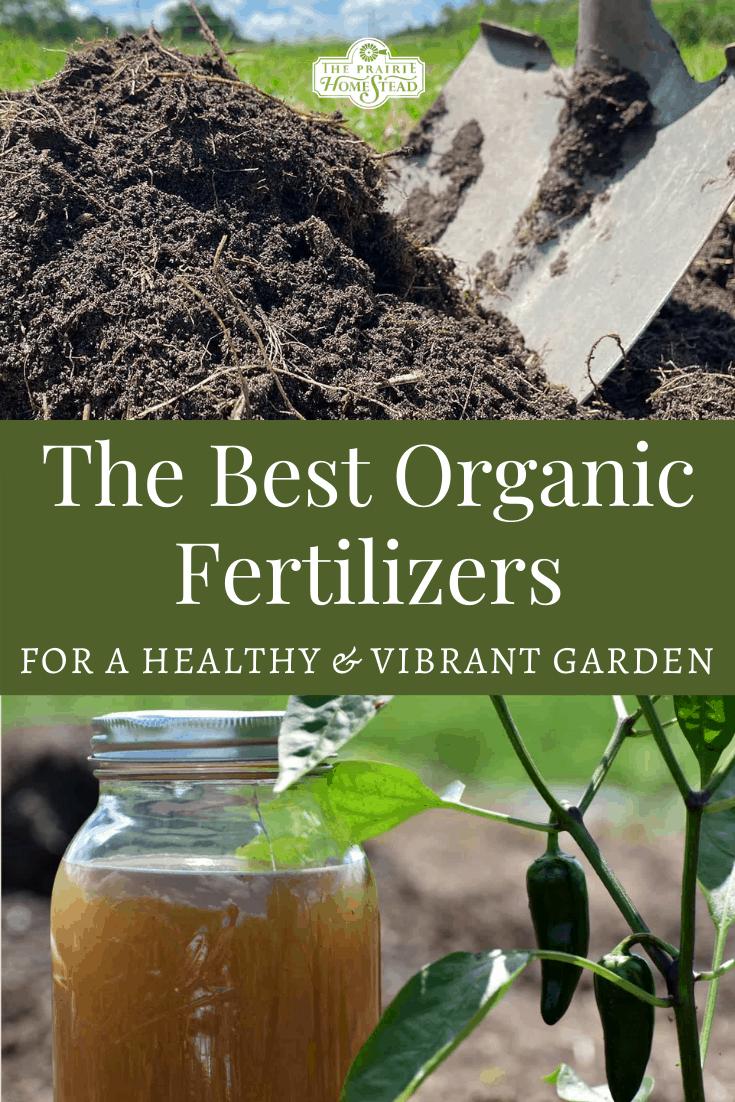 The Best Organic Fertilizers for Your Vegetable Garden