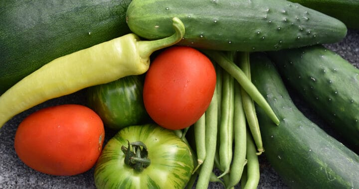 How to Manage Your Garden Harvest | Harvest Time