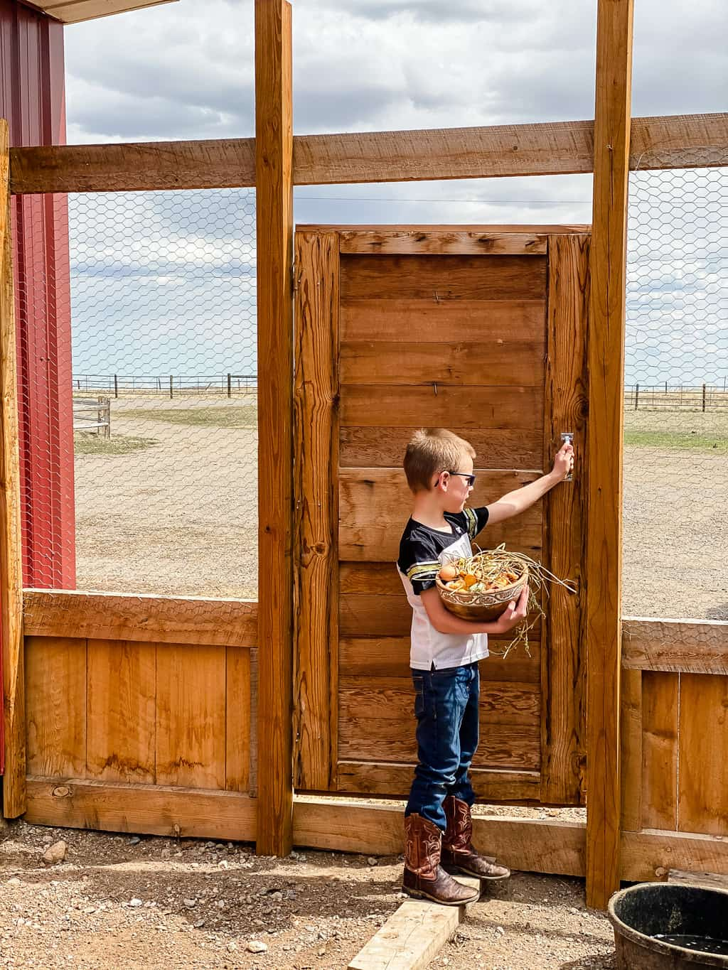 Homesteading With Kids Bridger and Chickens