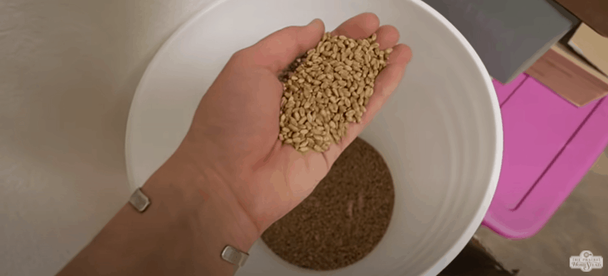 How To Build Your Food Storage