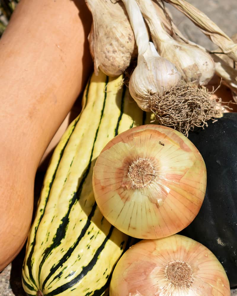 Store Vegetables Without A Root Cellar